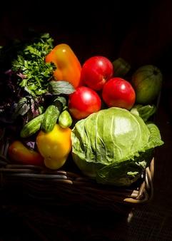 Herbstliches sortiment an frischem gemüse