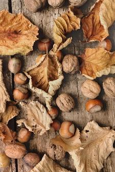 Herbstliches stillleben