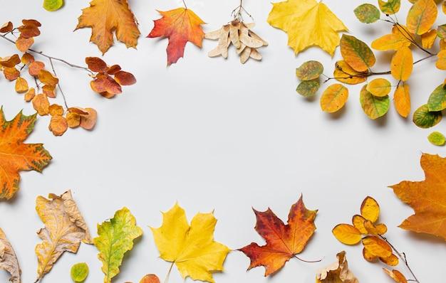Herbstmuster von bunten gefallenen blättern auf grauem hintergrund mit kopienraum