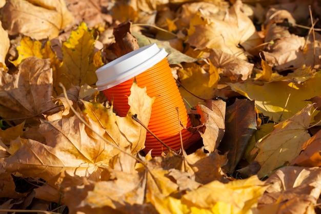 Herbstnatur mit bäumen mit vergilbten blättern und bäumen mit umgestürzten blättern, im laub liegt ein pappbecher