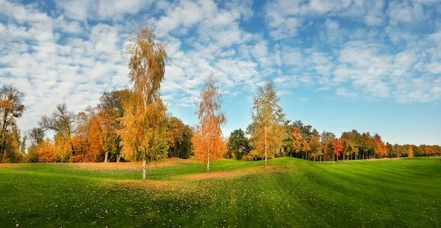 Herbstpark, bäume mit buntem laub