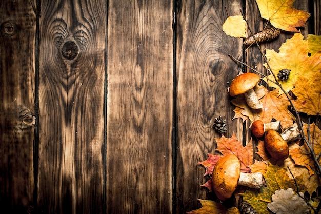 Herbstpilze mit ahornblättern. auf einem holztisch.