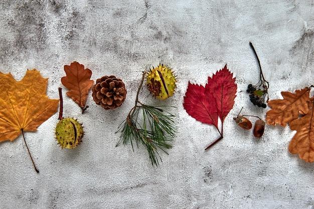 Herbstrahmen aus getrockneten blättern, ästen, tannenzapfen, beeren, eicheln und hand mit tasse kaffee auf dunklem betonhintergrund. vorlage mockup herbst, halloween. flach legen, hintergrund kopieren.