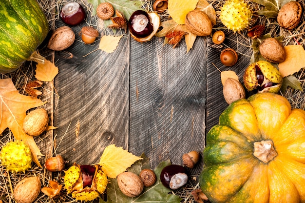 Herbstrahmenhintergrund mit farbigen blättern, kürbis, kastanien, walnussnüssen und eicheln