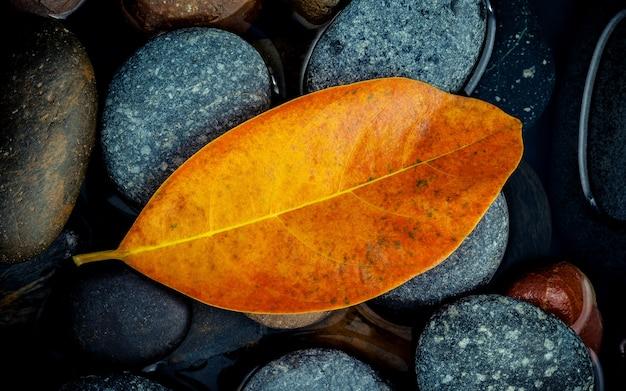 Herbstsaison und friedliche konzepte. orange blatt auf flussstein.