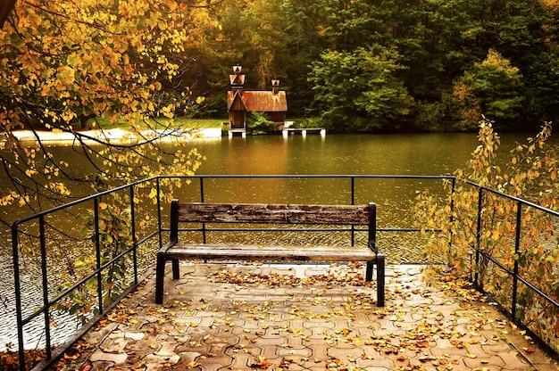 Herbstsee im wald