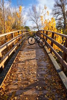 Herbstsonnenuntergangfahrrad auf brücke parque de turia