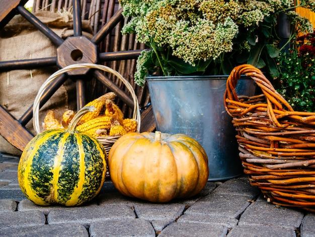 Herbststillleben mit gemüse und blumen.