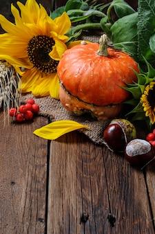Herbststillleben mit kürbis und sonnenblume