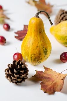 Herbststillleben mit kürbis, wilden äpfeln und trockenen gelben blättern.