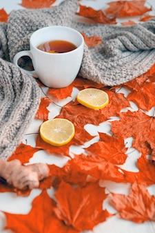 Herbststillleben mit weißer tasse tee, wärmendem grauem schal und bunten roten blättern mit ingwer und l...