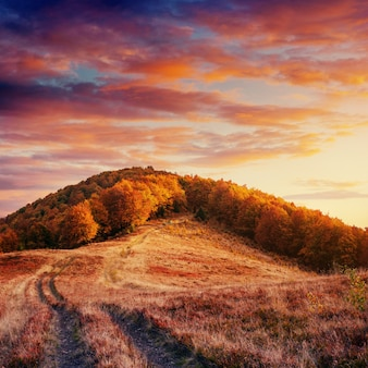Herbststraße in den bergen. fantastische cumuluswolken, dramatisch