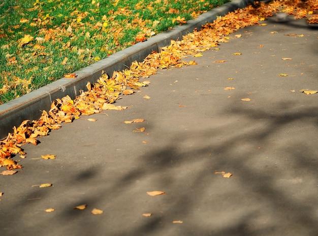 Herbststraßenpflasterobjekthintergrund