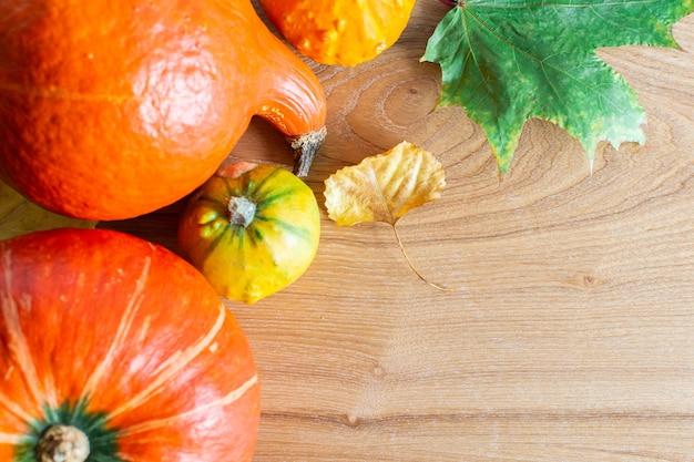 Herbstwand mit orangefarbenen kürbissen und blättern von ahorn, eiche und trauben- und kastanienfrüchten