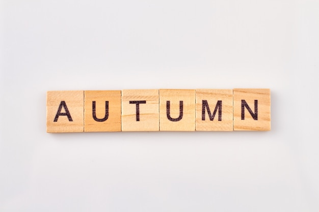 Herbstwort geschrieben auf holzblock. alphabetwürfel mit buchstaben lokalisiert auf weißem hintergrund.