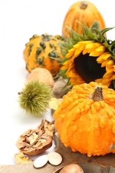 Herbstzusammensetzung (altes hölzernes brett der kürbise). erntedankfest-konzept