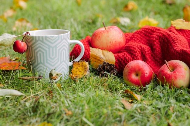 Herbstzusammensetzung auf hellem naturhintergrund offen