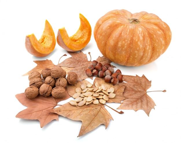 Herbstzusammensetzung der schönen geschenke der natur.