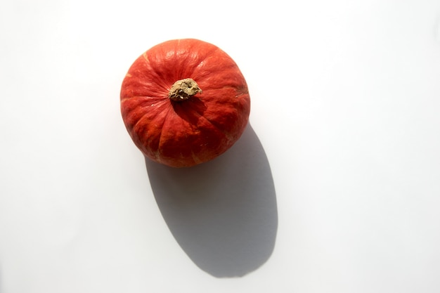 Herbstzusammensetzung. kürbis mit scharfen schatten auf weißem hintergrund. vorlage mockup herbst, halloween, erntedankfest konzept. flache lage, draufsicht, platzbanner kopieren