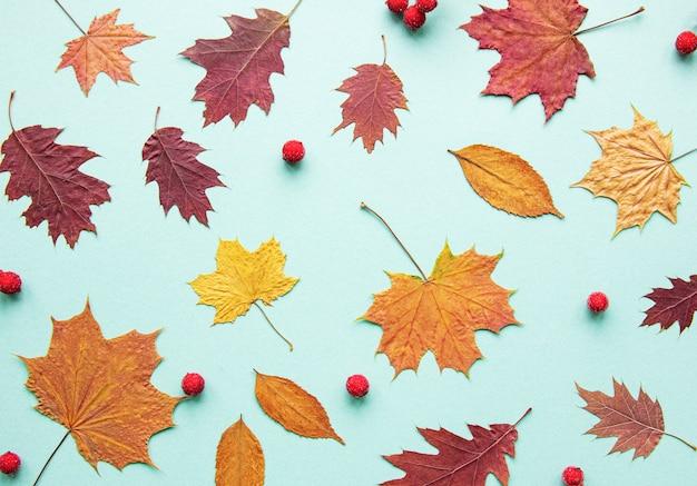 Herbstzusammensetzung mit blättern