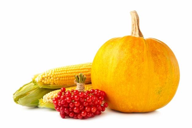 Herbstzusammensetzung mit herbstkürbis, mais und viburnum lokalisiert auf weiß. draufsicht