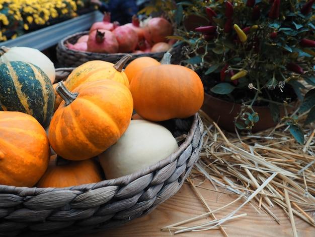 Herbstzusammensetzung mit kürbisen, stroh und ahornblättern.