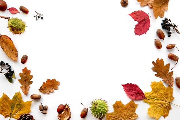 Herbstzusammensetzung. rahmen aus getrockneten blättern, ästen, tannenzapfen, beeren, kastanien und eicheln isoliert auf weißem hintergrund. vorlage mockup herbst, halloween. flach legen, raumhintergrund kopieren