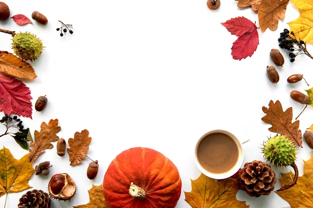 Herbstzusammensetzung. rahmen aus getrockneten blättern, kürbis, tannenzapfen, beeren, kastanien und eicheln isoliert auf weißem hintergrund. vorlage mockup herbst, halloween. flach legen, hintergrund kopieren.