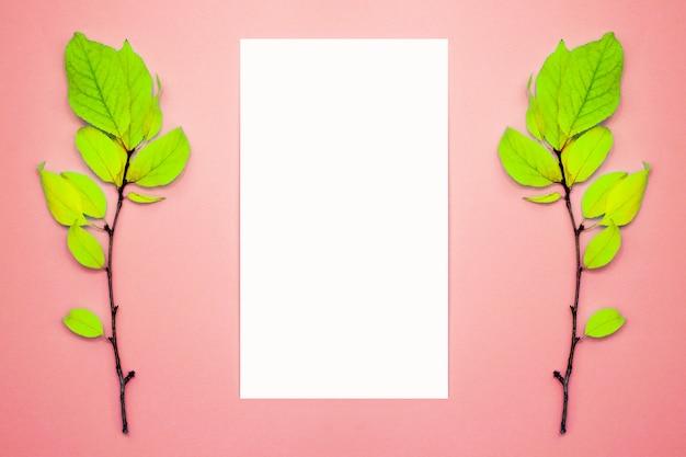 Herbstzusammensetzung, rahmen, leeres papier. zwei niederlassungen mit hellgrünen blättern, pflaume, auf einem hellrosa hintergrund. flache lage, draufsicht, copyspace