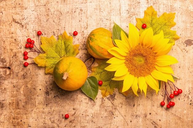 Herbstzusammensetzung. sonnenblumen, rote beeren und kürbisse. festlicher hintergrund für gute laune, flache lage, ansicht von oben