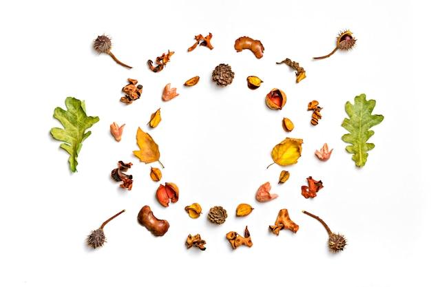 Herbstzusammensetzung von getrocknetem blatt, beeren, blume