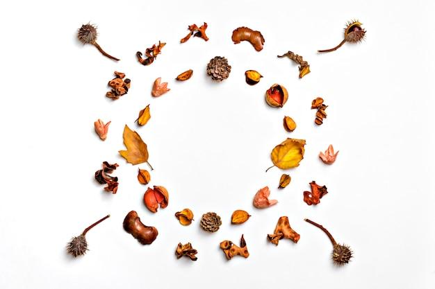 Herbstzusammensetzung von getrocknetem blatt, beeren