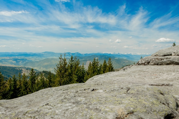 Herrlicher panoramablick auf den nadelwald in den mächtigen karpaten