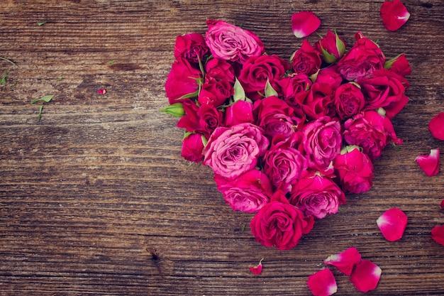 Herz der frischen rosenknospen lokalisiert auf weißem hintergrund, instagram gefiltert