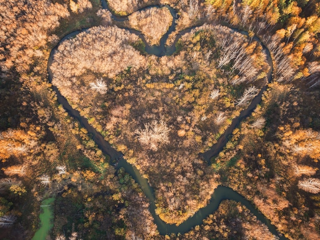 Herzförmiger fluss