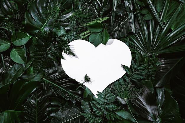 Herzform-ausschnitt mit grünen blättern liebeskonzept flache lage