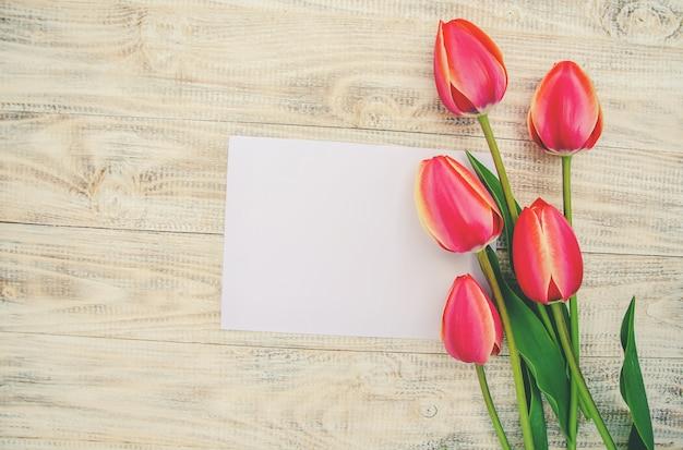 Herzlichen glückwunsch und tulpen auf hellem hintergrund. selektiver fokus.