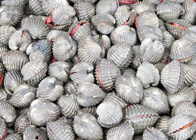Herzmuscheln auf dem markt