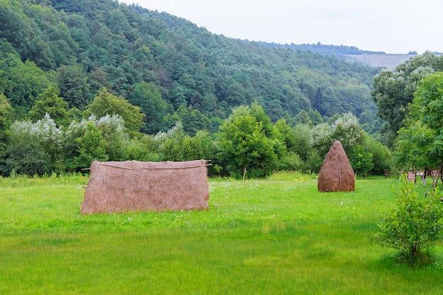 Heuhaufen in der nähe von obstgarten am hang. landwirtschaftliches feld im berggebiet. wunderschönen