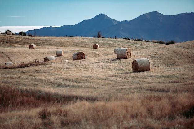 Heuschober auf einem gebiet im sommer gegen einen hintergrund von bergen in neuseeland