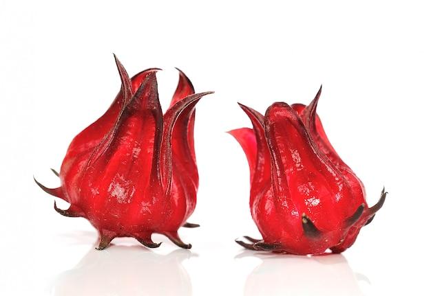 Hibiscus sabdariffa oder roselle früchte