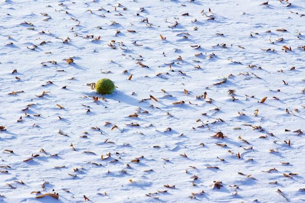 High angle shot von schönen schneetexturen mit gefallenen trockenen blättern