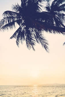 Himmel meer palme ozean natur