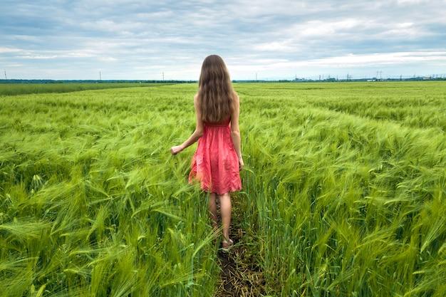 Hintere ansicht der jungen romantischen dünnen frau im roten kleid mit dem langen haar gehend auf dem grünen gebiet am sonnigen sommertag auf kopienraum des blauen himmels