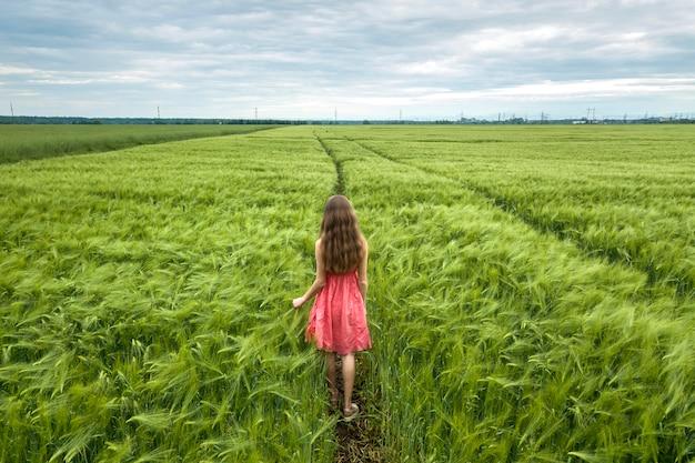 Hintere ansicht der jungen romantischen dünnen frau im roten kleid mit dem langen haar gehend auf dem grünen gebiet am sonnigen sommertag