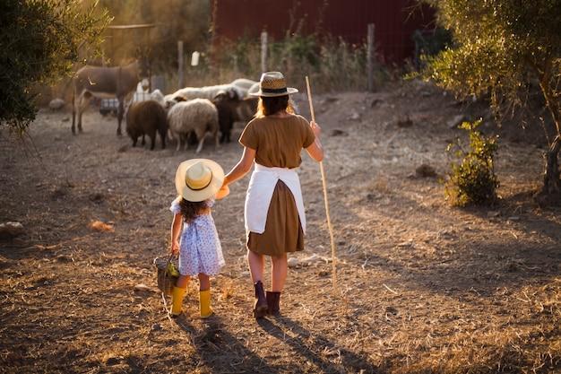 Hintere ansicht der mutter und ihrer tochter, die schafe auf dem gebiet in herden leben