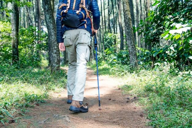 Hintere ansicht des asiatischen reisendmannes mit dem rucksack- und wanderstockgehen