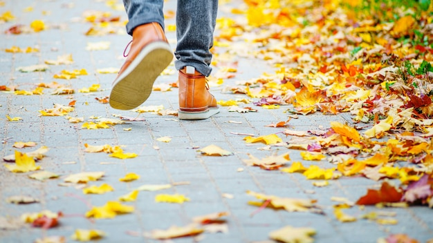 Hintere ansicht über die füße eines mannes in den braunen stiefeln gehend entlang den bürgersteig, der mit gefallenen blättern gestreut wird.