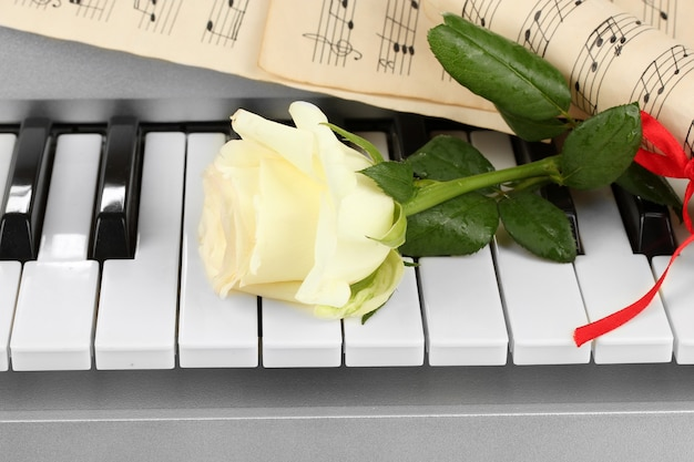 Hintergrund der klaviertastatur