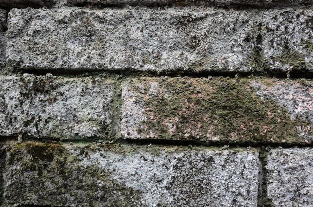 Hintergrund der rauen steinmauer mit flechten und moos